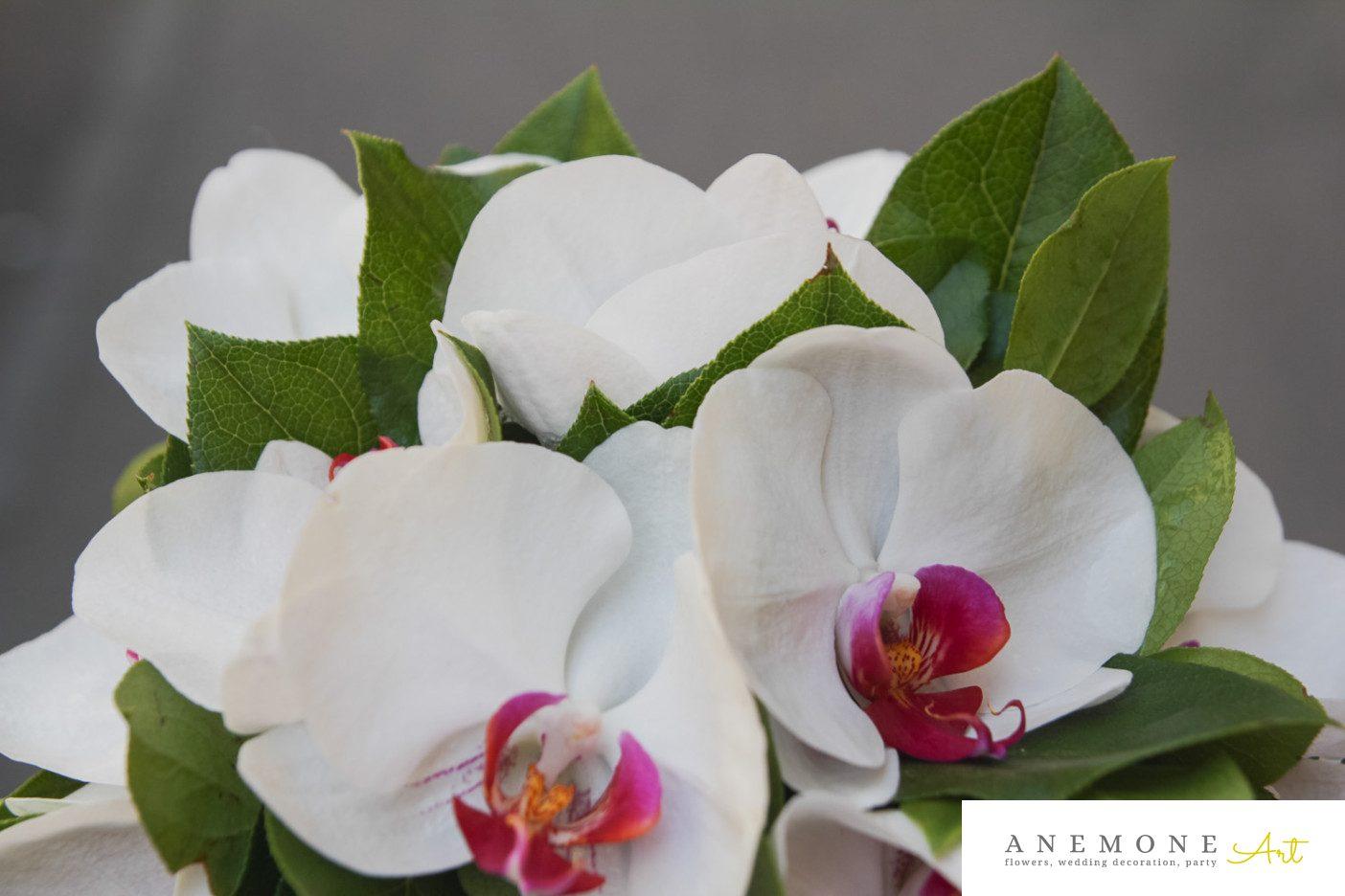 Poza, foto cu Flori de nunta alb, buchet mireasa, orhidee, phalaenopsis in Arad, Timisoara, Oradea (wedding flowers, bouquets) nunta Arad, Timisoara, Oradea