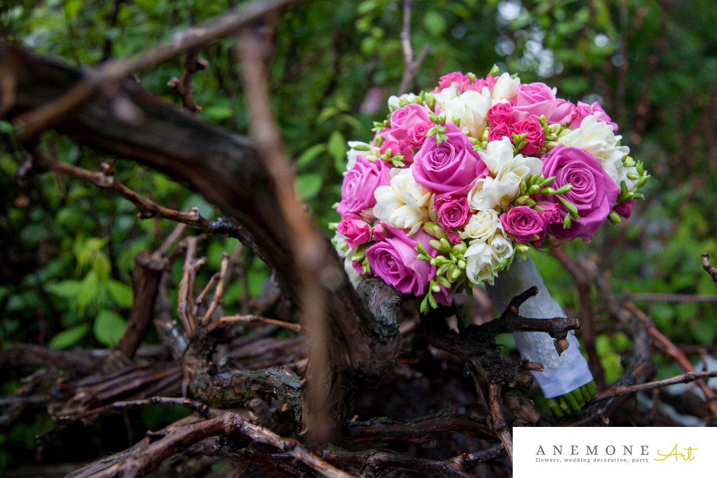 Poza, foto cu Flori de nunta buchet mireasa, rotund, roz, ticlam, trandafiri in Arad, Timisoara, Oradea (wedding flowers, bouquets) nunta Arad, Timisoara, Oradea