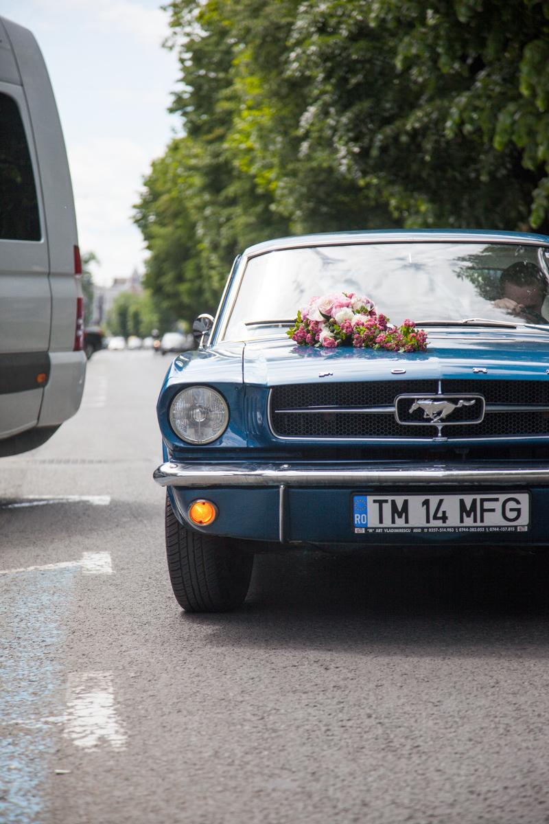 Poza, foto cu Flori de nunta decor masina in Arad, Timisoara, Oradea (wedding flowers, bouquets) nunta Arad, Timisoara, Oradea