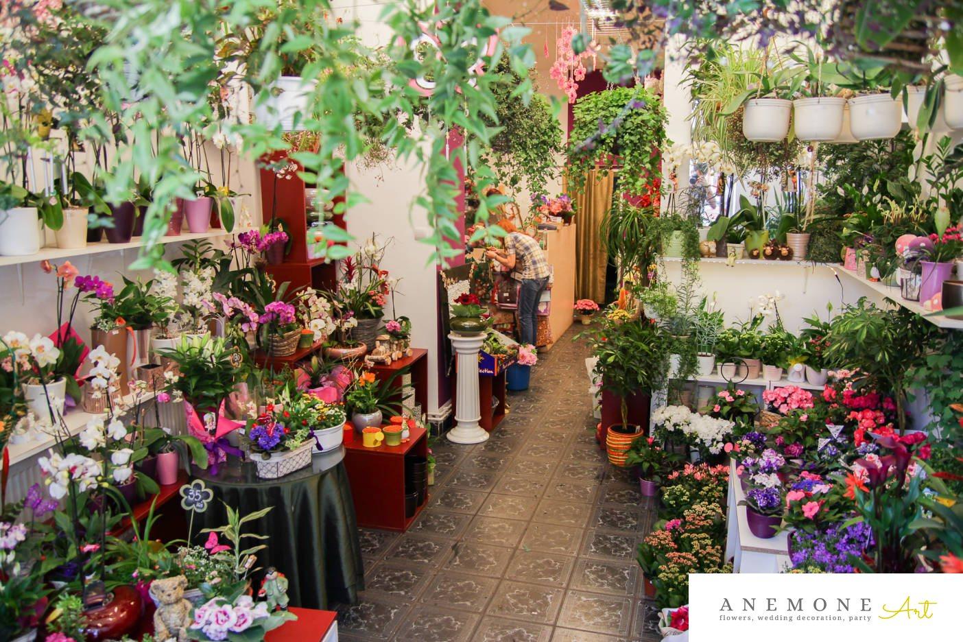 Poza, foto cu Flori de nunta florarie in Arad, Timisoara, Oradea (wedding flowers, bouquets) nunta Arad, Timisoara, Oradea