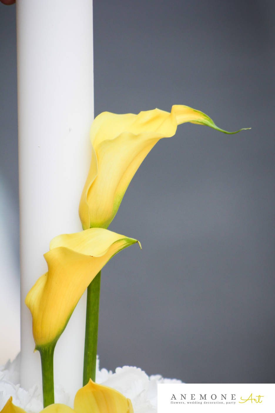Poza, foto cu Flori de nunta alb, calla, galben, glob, hortensia, lumanare cununie in Arad, Timisoara, Oradea (wedding flowers, bouquets) nunta Arad, Timisoara, Oradea